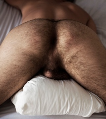 His Hairy Arse
